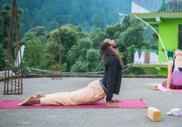200 Hour Hatha Yoga TTC