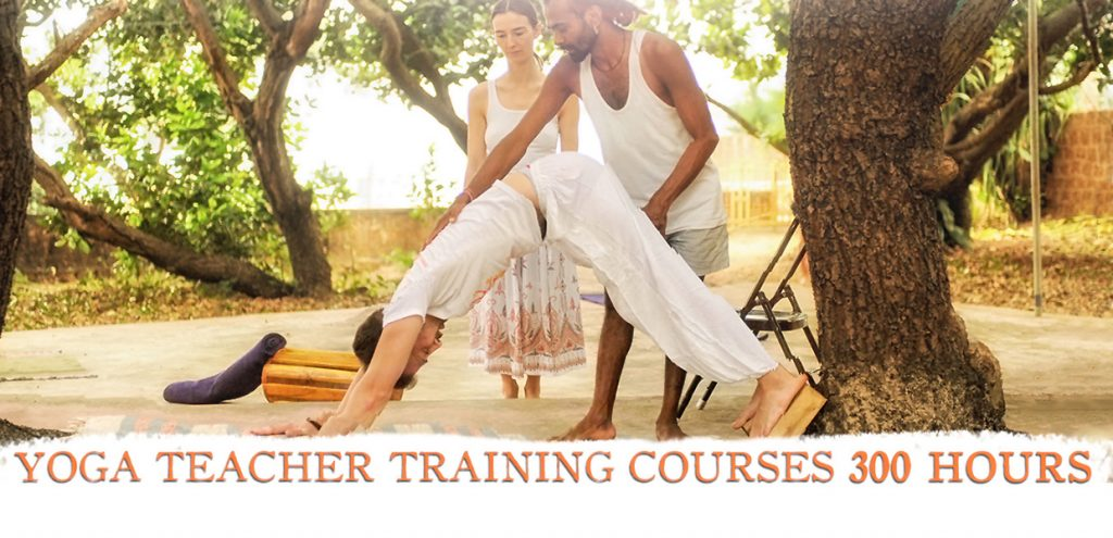 300 hour yoga teacher training in gokarna