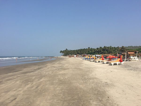 Shree Hari Yoga Teacher Training in Ashvem Beach Goa India