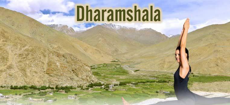 Shree Hari Yoga teacher training in Dharamshala India