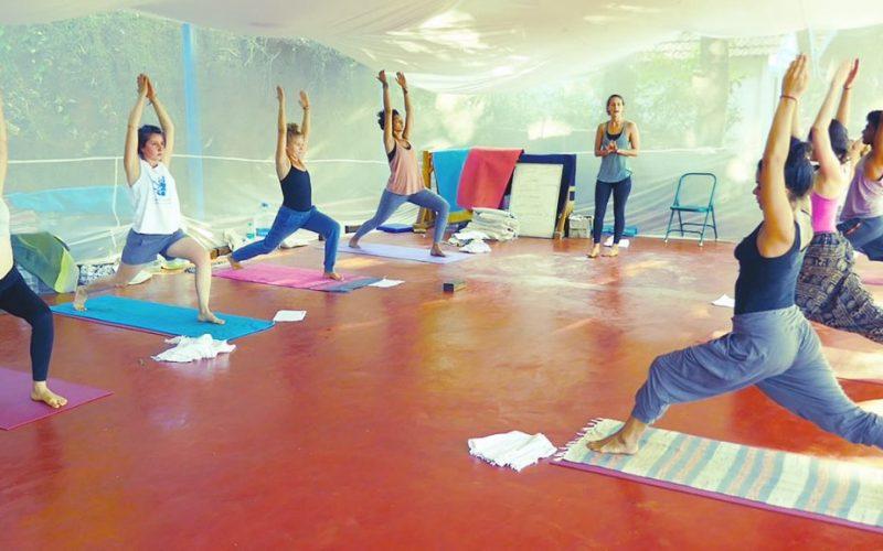 ashtangayoga with polly in shree hari yoga